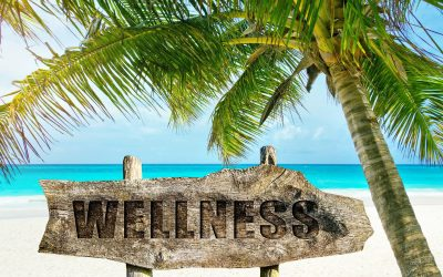 WELLNESS ON HOLIDAY…